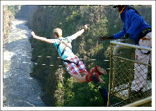 A client Bungee-jumping on one of Rush Adventures Victoria Falls Tours
